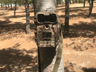 camara trail correctamente colocada