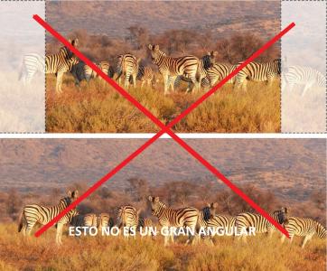 Ejemplos de fotos que no son de gran angular