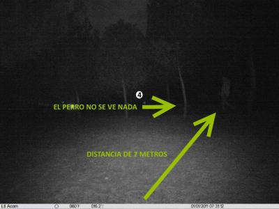 Foto de camara de caza con objetivo gran angular de noche