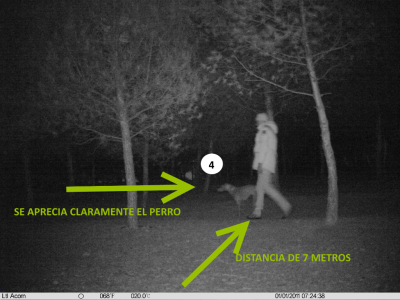 Foto de camara de fototrampeo con objetivo normal por la noche